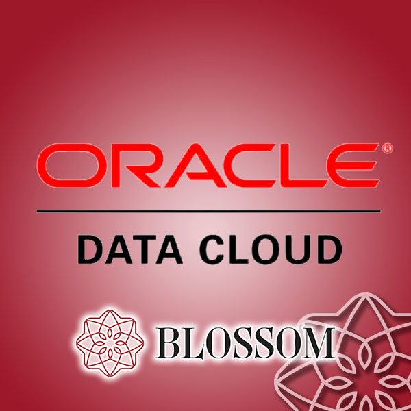 Blossom is now Oracle Data Cloud Audience Partner