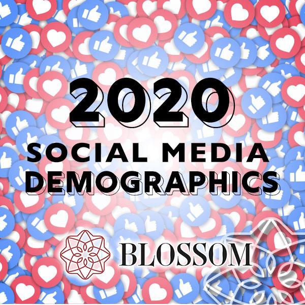 2020 Social Media Demographics